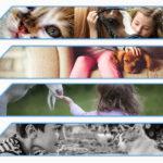 Beneficios de los animales para personas discapacitadas discapacitados
