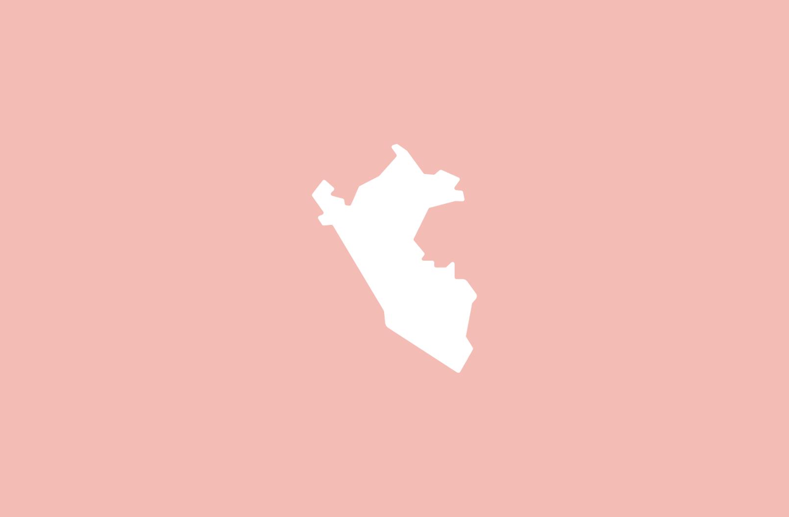 Discapacidad y trabajo en Perú ¿Que dice la Ley?